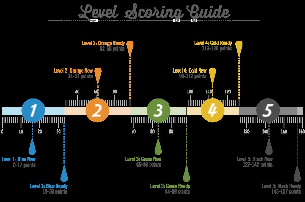 Level Scoring Guide5