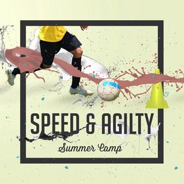 summer Speed Agility19v4 Thumb